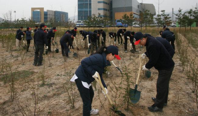 2014년 북한 개성공단 인근에서 남북 관계자들이 식목 행사를 벌였다.