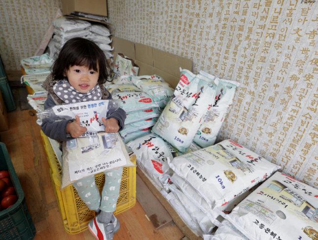 대룡시장의 오래된 시계방과 골목길, 밥맛 좋은 교동 간척지 쌀(위부터).