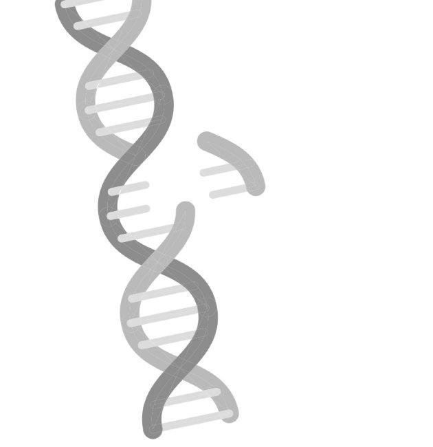 '유전자 변형 인간' 기술, Go? Stop!