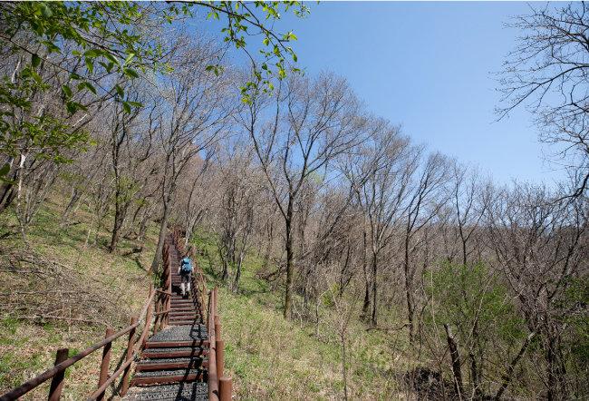 주흘산 정상에 오르려면 1700여 개에 이르는 천국의 계단을 거쳐야 한다.
