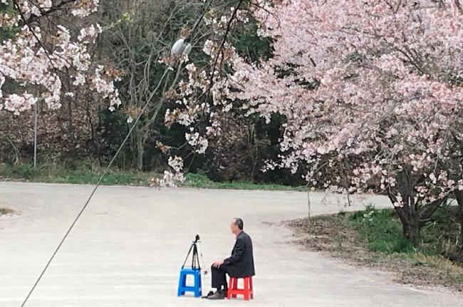 흩날리는 벚꽃 나무 아래에서 유튜브 방송 촬영 중인 박일환 전 대법관. [박일환 제공]