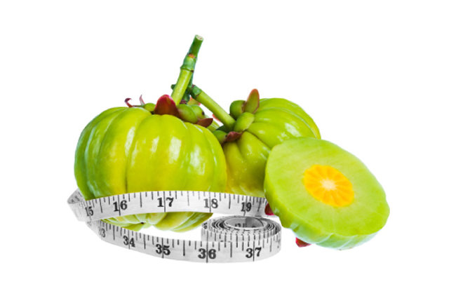 열대 식물 가르시니아 캄보지아 열매 껍질에는 탄수화물이 지방으로 합성되는 걸 막아주는 기능성 물질이 들어 있다.