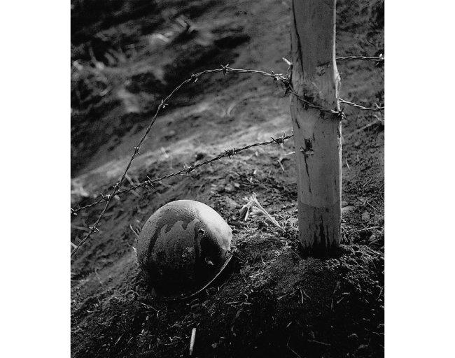 호국의 꽃 (1953년 작).