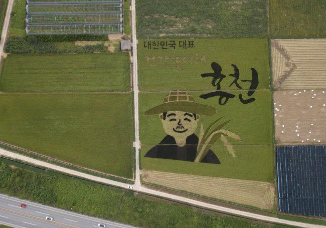 가을 추수를 앞둔 농부의 마음을 형상화 한 강원 홍천의 논 그림.