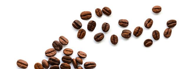 커피와 소주, 냉정과 열정 사이