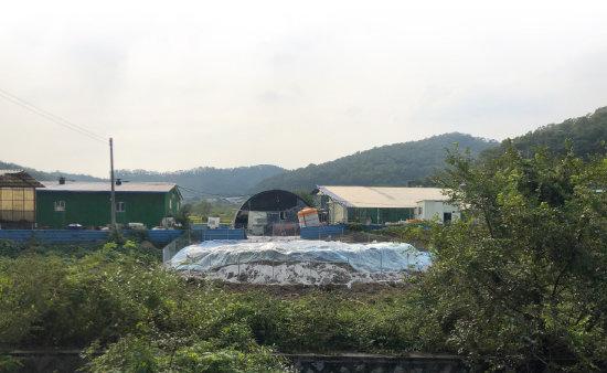 아프리카돼지열병이 발생한 농장은 시간이 멈춰 선 듯했다.