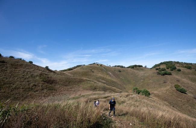 석회암지대에서 볼 수 있는 돌리네 지형으로 이루어진 정상부.