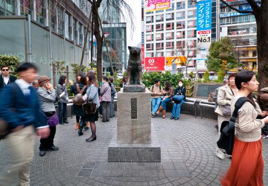 일본 시부야역에 있는 강아지 하치 동상. [GettyImage]