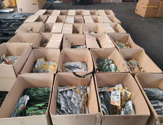 인천 남동경찰서는 2월 29일 경기도 김포시 한 창고에서 사재기한 마스크 2만9000여 장을 압수하고 관련자들을 불구속 입건했다. [뉴스1]