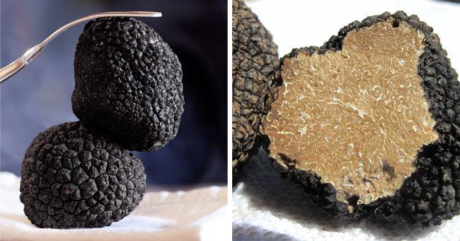 화산석처럼 생긴 블랙 트러플(왼쪽). 매끈하고 부드러운 트러플 안쪽 모습.