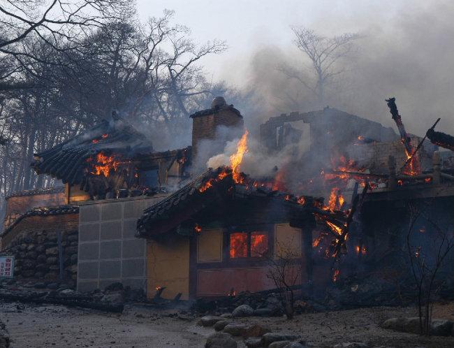 불타는 낙산사(2005 양양).