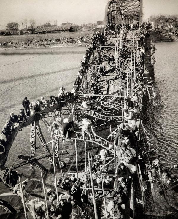 '1951 한국전쟁/맥스 데스포'