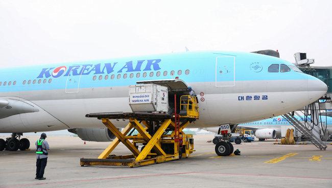 대한항공 에어버스 330 여객기의 '밸리 카고'(belly cargo)에 화물을 적재하는 모습. [대한항공 제공]