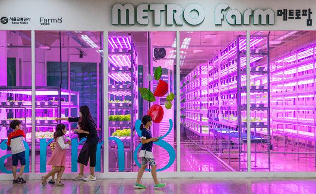 서울지하철 7호선 상도역 역사에 설치된 스마트팜.