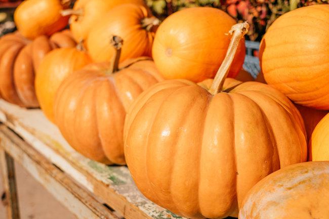 단단하고 무겁지만 풍성한 맛 덕에 가을철 먹을거리로 인기 많은 늙은호박. [GettyImage]