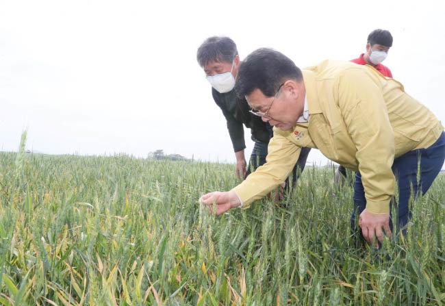 지역 농가를 찾은 권익현 군수. 부안군은 '부안형 푸드플랜'을 통해 지역 내 농수산물 가격 안정화에 나설 예정이다.  [부안군청 제공]