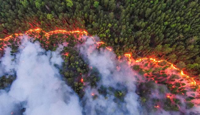 7월 시베리아의 숲을 태우고 있는 산불. 올해 북극권 산불이 크게 늘어난 원인으로 '잔존 산불'이 꼽히고 있다. [그린피스 제공]