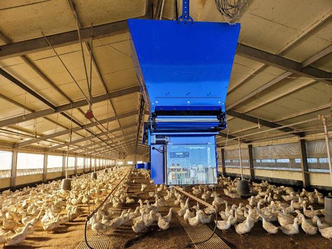 스마트팜 제품 생산기업 '다운'의 왕겨살포로봇이 오리 사육장 내부에 왕겨를 뿌려주는 모습. [농업기술실용화재단 제공]