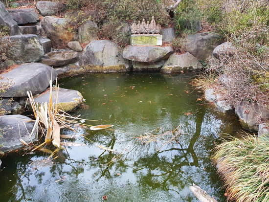 꽁꽁 얼어붙었던 연못의 얼음이 많이 풀렸다. 이제 얇은 얼음이 덮고 있을 뿐이다. 마음이 번잡할 때 연못을 한참 바라보면 평온이 돌아온다. 봄이 되면 철쭉을 중심으로 하여 연못은 화려하게 변신한다. 봄의 색깔로 단장할 연못, 생각만 해도 황홀하다. 우리 모두에게 찬란한 봄이 오기를 기다린다.