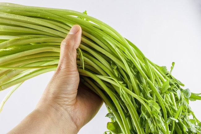 길고 가는 줄기에 부드러운 이파리가 나풀나풀 달린 미나리는 깨끗이 씻어 날로 먹으면 가장 맛있다. [GettyImage]