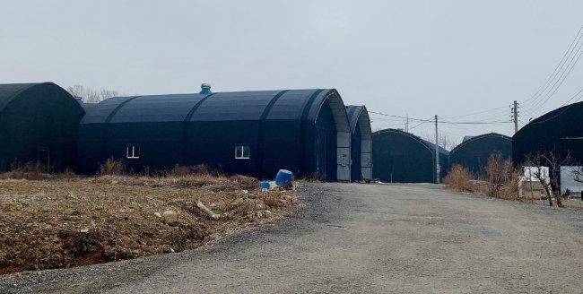 3월 14일 경기 광명시 노온사동 일대 창고형 비닐하우스. 농지에서 임대형 창고를 운영하는 것은 불법이다. [문영훈 기자]