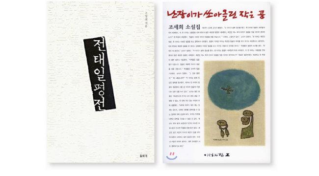 '전태일평전'과 '난장이가 쏘아올린 작은 공'은 1970, 1980년대 운동권의 필독서였다.
