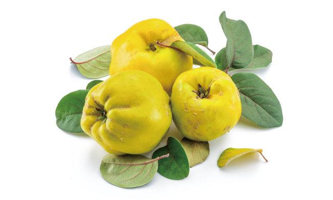 비타민C, 칼슘, 칼륨, 철분 등을 다량 함유한 모과는 근육경련 치료의 특효약으로 손꼽힌다. [GettyImage]