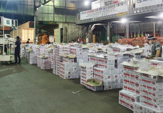 깻잎 경매가 열리기 전 중도매인들이 박스를 열어보며 출하 상품 품질을 검사하고 있다. [오홍석 기자]