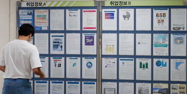 지난해 9월 서울시내 한 대학의 취업게시판에 취업정보가 걸려있는 모습. [뉴스1]