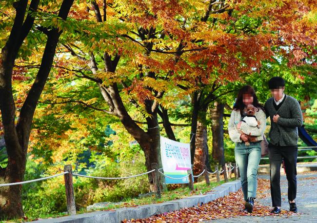 최근 공공장소에서 의식적으로 펫티켓을 지키는 펫팸족이 늘어나는 추세다. 사진은 반려견과 함께 서울 송파구 올림픽공원을 찾은 시민들의 모습.  [동아DB]