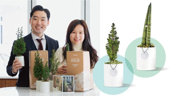김형수 트리플래닛 대표(왼쪽)와 윤정희 콘텐츠라이터가 '반려나무'를 소개하고 있다. [지호영 기자, 사진 제공·트리플래닛]