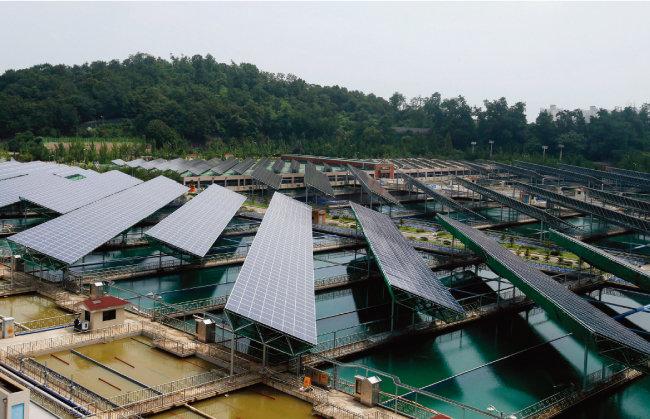 서울 강동구 암사아리수정수센터에 설치된 수도권 최대 규모의 태양광 발전시설 '암사태양광발전소'. [동아DB]
