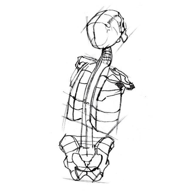 허리 통증 미스터리, 수술은 왜 효과가 없나