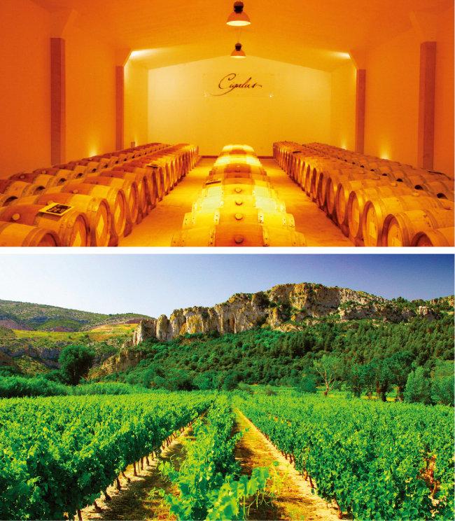 시갈뤼스 와인 숙성실(위)과 내륙에 위치한 제라르 베르트랑 소유의 포도밭. [사진 제공 · 하이트진로㈜]