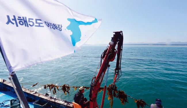 북·미 정상회담을 앞두고 서해5도 어민들이 평화를 상징하는 한반도기를 어선에 달고 다시마 조업을 하고 있다. [뉴시스]