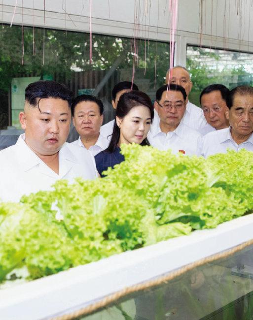 중국을 방문한 김정은 북한 국무위원장(왼쪽)이 6월 20일 부인 리설주와 함께 베이징의 중국농업과학원 국가농업과학기술혁신원을 찾아 둘러보고 있다. [뉴시스]