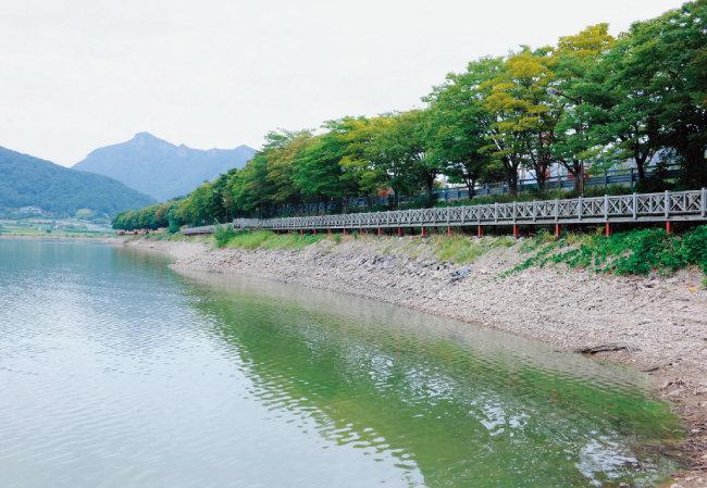전남 장성 장성호관광지 산책로.