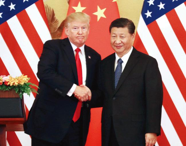 지난해 11월 중국 베이징에서 정상회담을 가진 도널드 트럼프 미국 대통령과 시진핑 중국 국가주석. [뉴시스]