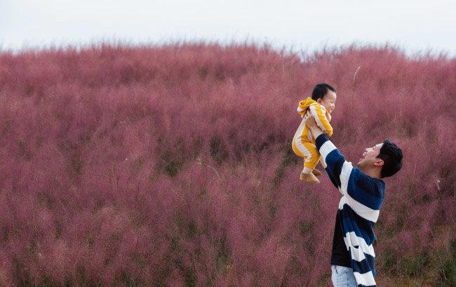 핑크빛 억새밭에 핑크빛 아빠 미소