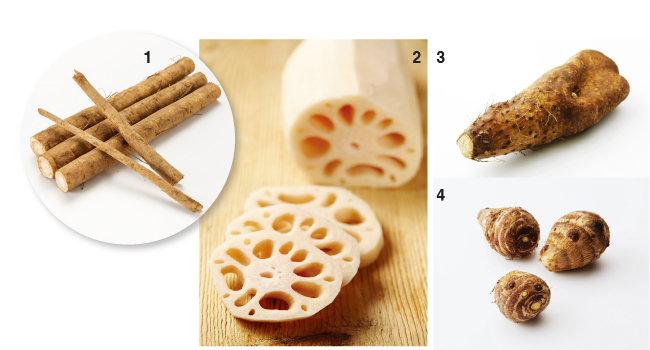 1 단단하고 곧은 우엉, 2 독특한 생김새의 연근, 3 생으로 먹기 좋은 단마, 4 토실토실한 토란. [사진 제공·김민경]
