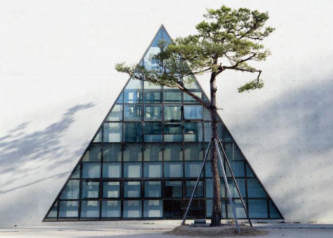 송학관을 상징하는 소나무 배경의 삼각학교 서남면. 노출콘크리트 가운데에 피라미드 형태로 창이 나 있다. [지호영 기자]