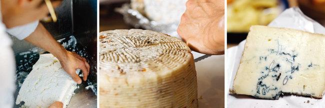 조장현 '치즈플로' 셰프가 체다 치즈를 만들고 있다(왼쪽) 푸른곰팡이균을 넣은 블루치즈. [사진 제공·치즈플로]
