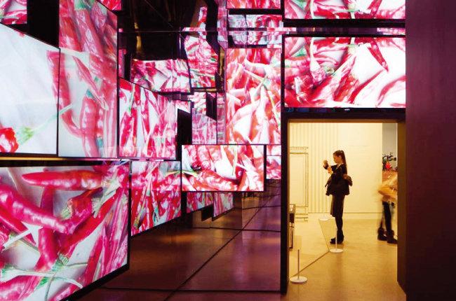 2013년 '헬로, 마이 네임 이즈 폴 스미스' 영국 런던디자인뮤지엄 전시 사진. [designmuseum.org]