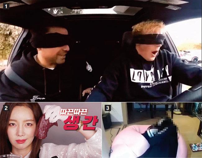 1 북미권에서 유행하는 버드박스 챌린지는 하루 종일 눈을 가린 채 생활하며 일어나 일들을 영상으로 담는다. 2 생간 먹방으로 일부 시청자의 눈살을 찌푸리게 한 유튜브 크리에이터 '쏘영'. 3 4월 일본에서 한 유튜버가 주먹밥을 한입에 먹는 콘텐츠를 진행하다 질식사하는 사건이 있었다. [유튜브 캡처]