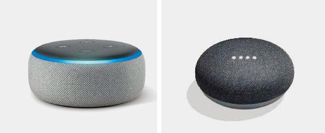 인공지능(AI) 음성 비서 역할을 하는 아마존 '알렉사 에코 닷'(왼쪽)과 구글 '홈 미니'.
