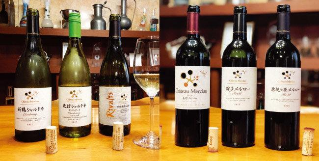 샤토 메르시앙의 샤르도네 와인과 메를로 와인들. [사진 제공 ·김상미]