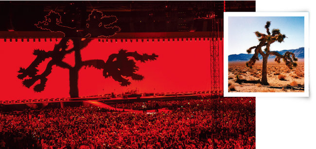 'The Joshua Tree Tour 2017' 로마 콘서트 현장(왼쪽)과 미국 서부에서 자라는 용설란과의 조슈아 나무. [위키피디아]