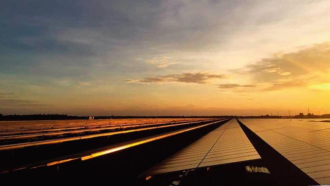 베트남 BCG-CME 롱안 1 태양광발전소는 50ha의 불모지에 4200만 달러를 투자해 1년여 만에 건설됐다. [사진 제공 · BCG]