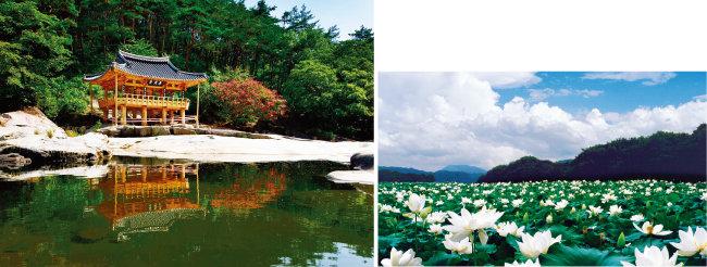 화림동 계곡의 '팔담팔정' 가운데 하나인 농월정(왼쪽)과 상림에 조성된 연꽃단지. [사진 제공 · 함양군청]
