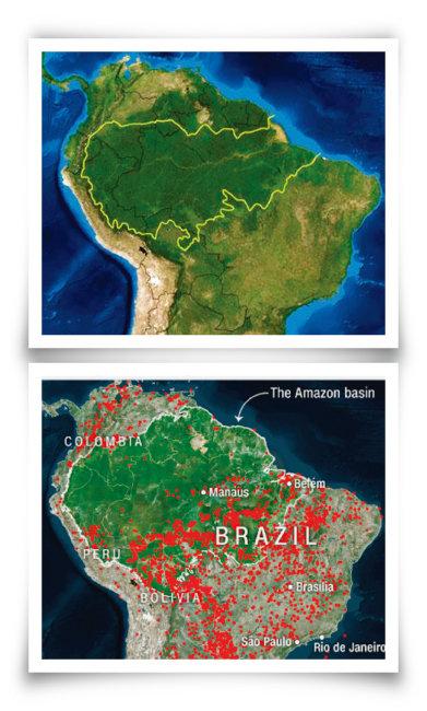 아마존 열대우림(황색선, 흑색선은 각국의 국경선) 지도(위)와 미국항공우주국(NASA)이 인공위성으로 촬영한 아마존 열대우림 화재 발생지(빨간색). [브라질 국립우주연구소]